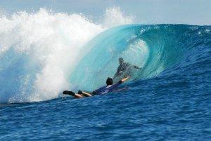 bruce surf